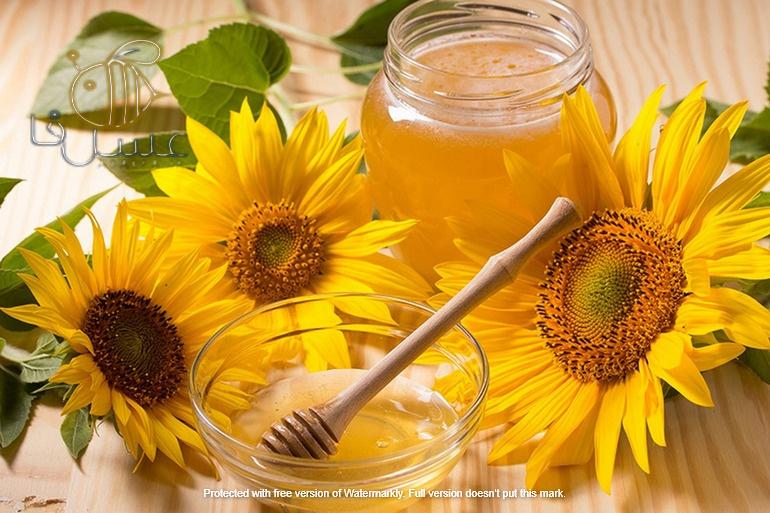 عسل آفتابگردان